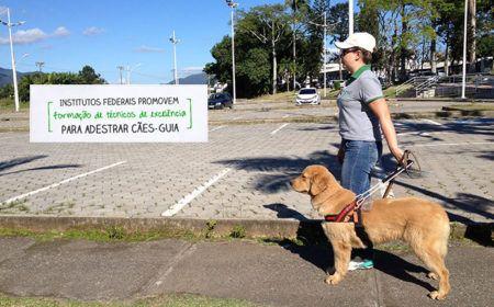 Curso Técnico em Adestramento de Cães-Guia
