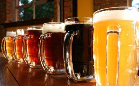 Cursos Gratuitos de Mestre Cervejeiro, Redação, Informática e Outros