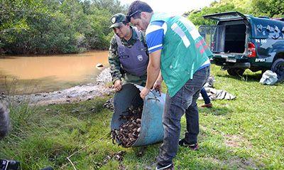 Inscrições Curso Técnico em Controle Ambiental Senai 2018