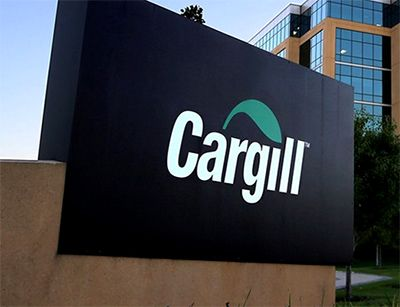 Estágio Cargill 2018