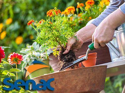 Jardineiro o que faz