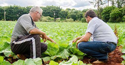 Curso Técnico Agrícola 2018