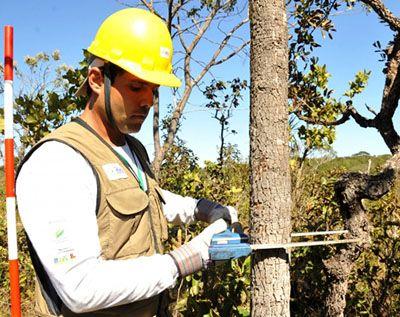 Curso Técnico em Florestas 2018