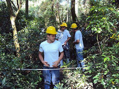 Inscrição Curso Gratuito Técnico em Florestas 2018