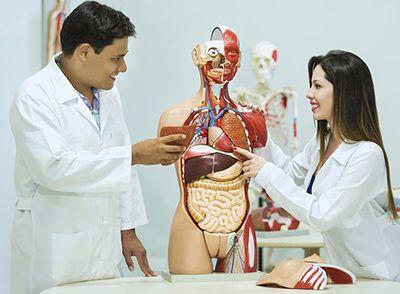Curso Técnico de Enfermagem Gratuito 2018