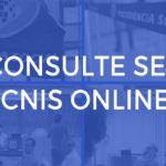 Comprovante CNIS Consulta