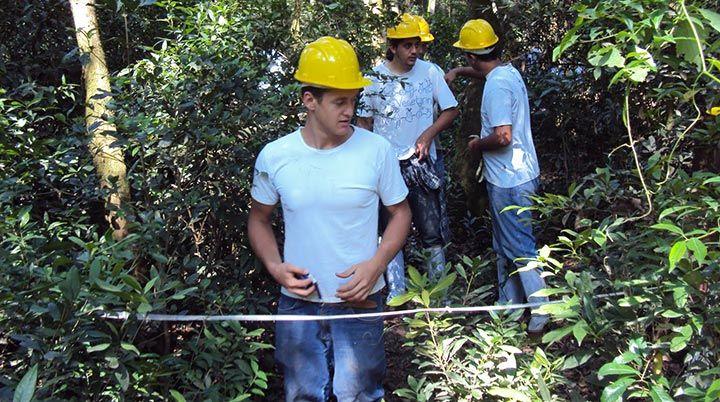 Curso Gratuito Técnico em Floresta 2019