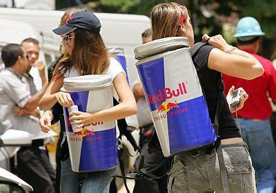 Trainee Red Bull 2019