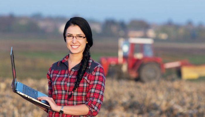estágios no ministério da agricultura