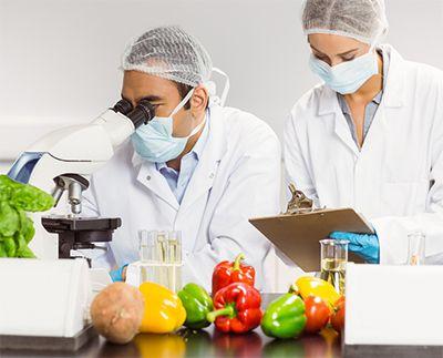Engenharia de Alimentos Matérias