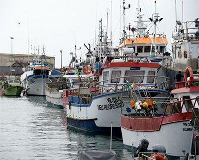 Técnico em Recursos Pesqueiros o que faz