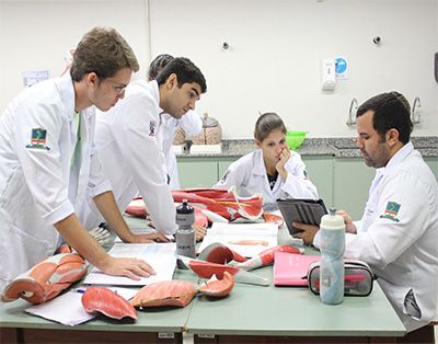 Faculdade de Medicina Preços