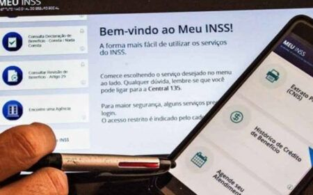 Como tirar extrato do INSS pela internet – Confira o passo a passo na matéria!