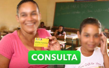 BOLSA FAMÍLIA abre CONSULTA: VALOR das PARCELAS do Auxílio Emergencial pode ser CONSULTADAS através do SITE..