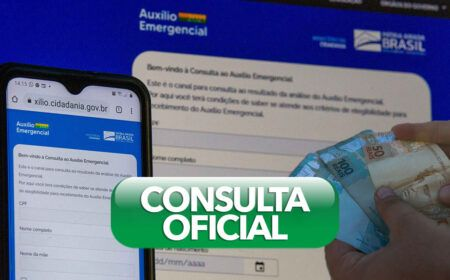 consultaauxilio.cidadania.gov.br: Veja como FAZER a consulta do Auxílio Emergencial 2021 através do site oficial!
