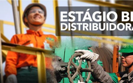 Trabalhe Conosco BR Distribuidora 2021: Abertas inscrições para programa de estágio