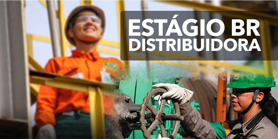 Trabalhe Conosco BR Distribuidora 2021