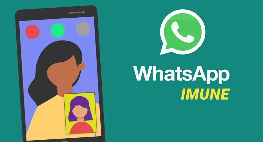 WhatsApp IMUNE APK 2021 o que é É confiável Pode danificar o celular ou manipular o Whats