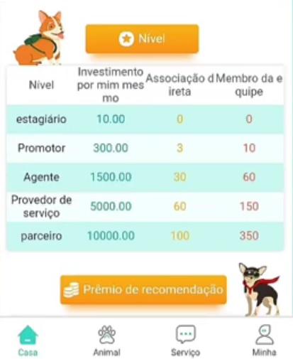 plataforma dg app
